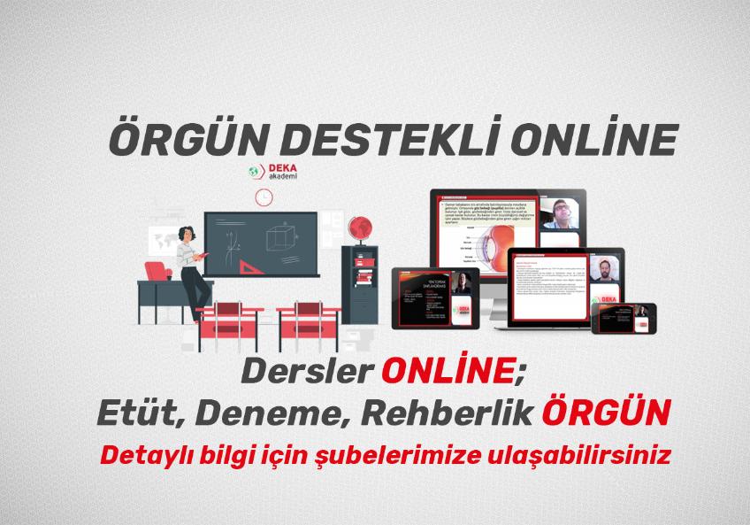 Örgün destekli online  eğitim modeli nedir?
